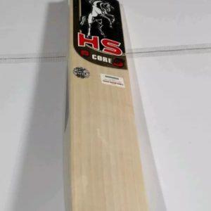 HS CORE 5 English willow bat